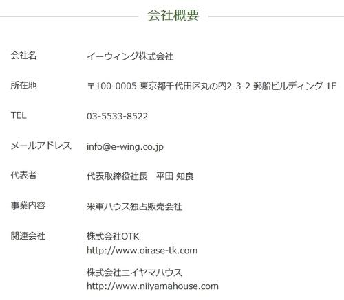 e-wing.jpg